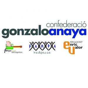 He sido proclamado Presidente de la Confederación Gonzalo Anaya (1)
